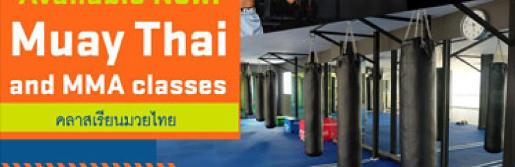 Group & Private Training of Muay Thai  & MMA Classes at True Arena Hua Hin