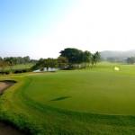 golf palm hill